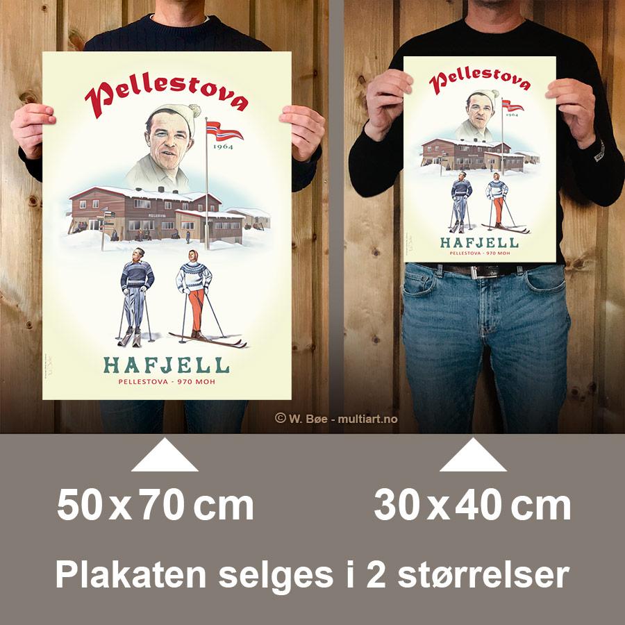 Pellestova-plakaten finnes i to størrelser
